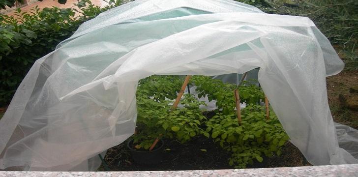 Teli in tessuto non tessuto tnt geo3 - Telo tessuto non tessuto giardino ...